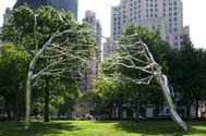Roxy Paine, Conjoined, 2007