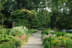 Heather Garden in Fort Tryon Park