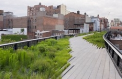 Rendering of the High Line