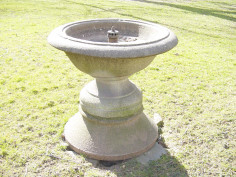 Image of Bird Bath