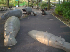 Image of Hippopotamus Fountain