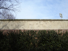 Image of African Antelopes