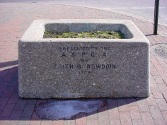 Rectangular horse trough with filling at either end and feed pipe at center