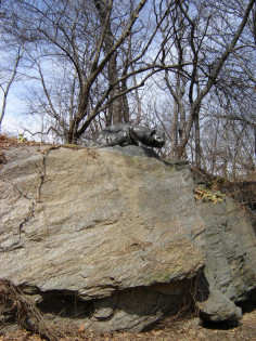 Crouching panther (over life-size) on boulder