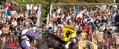 Crowd watches knight jousting