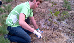 Apply to the Conservation Corps