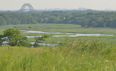 Discovery Day at Freshkills Park