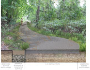 A proposed section view of the Putnam Rail Trail Type 1