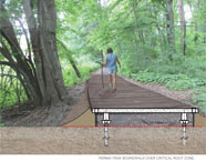 A proposed section view of the Putnam Rail Trail Type 3