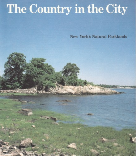 Grassy Beach with Rocks, Trees in the Background, Cover of Country in the City