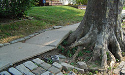 Before and after pictures of a damaged sidewalk repaired.