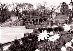 Photo of Bethesda Terrace, 1987