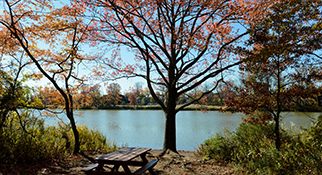 fall foliage at Wolfe's Pond Park, Staten Island