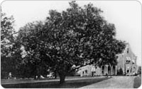 Image of 1905 Image of the Zborowski Mansion (the surrounding area is now Claremont Park)