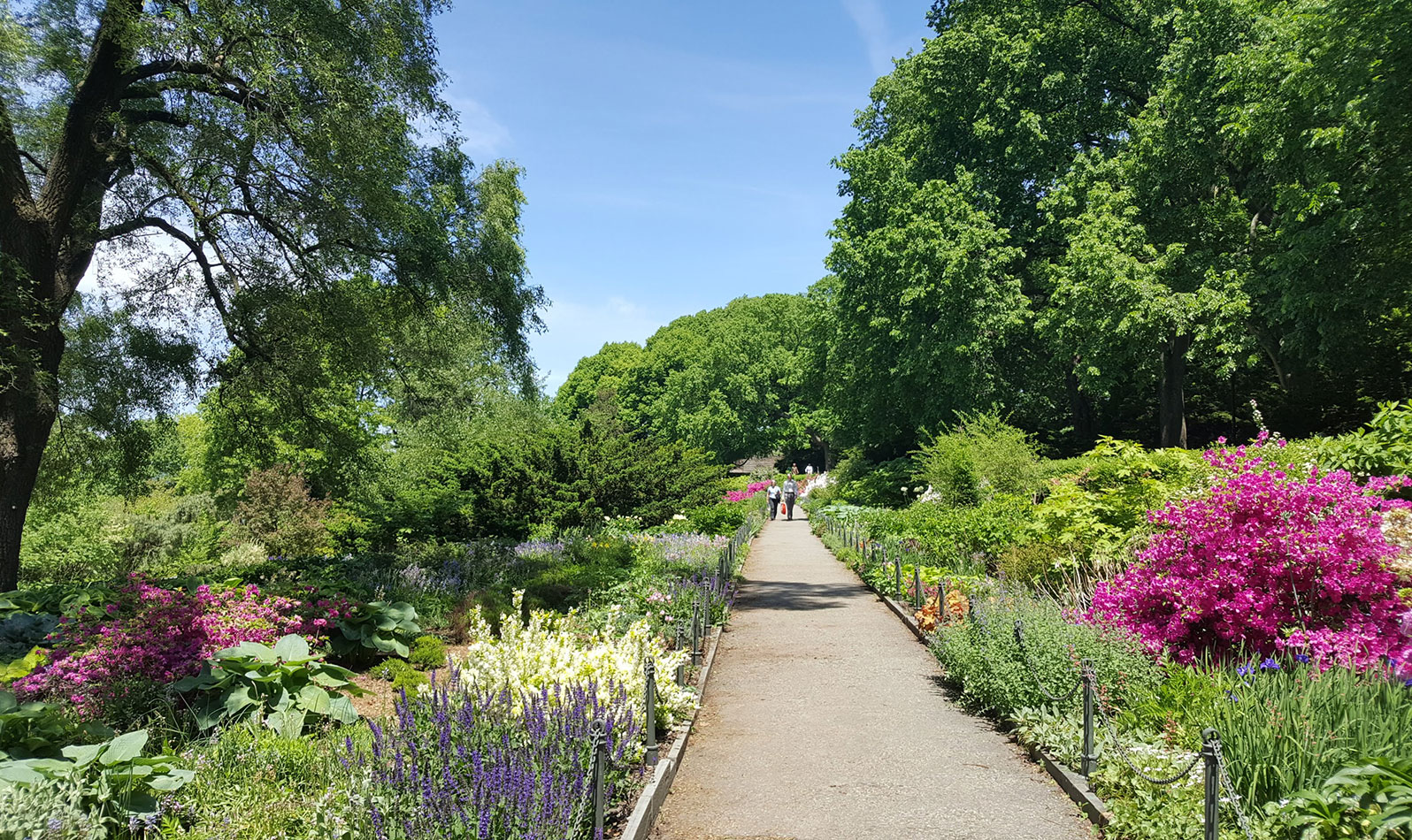 Massive, winding pathways lead through an urban forest and the famous Heather Garden.