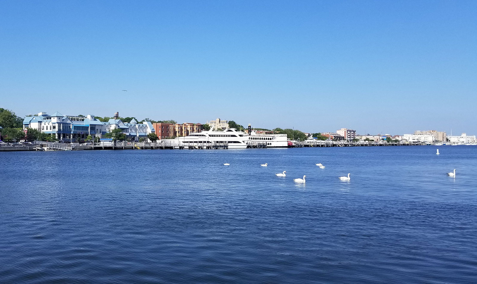 If you have more time to explore, head to Shore Boulevard for a stroll along Sheepshead Bay Piers. Be sure to take photos on the Ocean Avenue Pedestrian Bridge, which spans the bay!