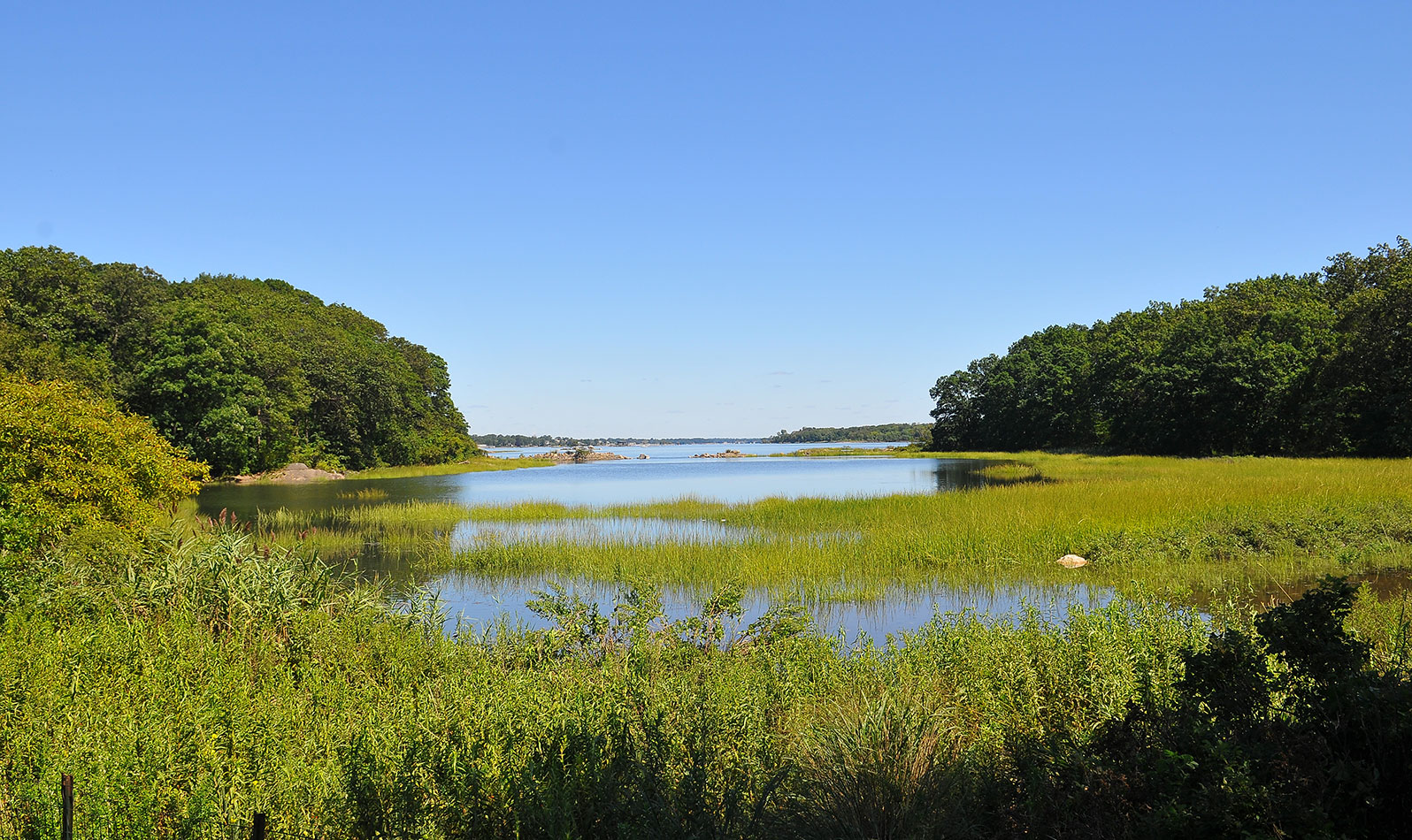 From the mansion, head out to The Lagoon, best enjoyed on foot on the Siwanoy Trail.