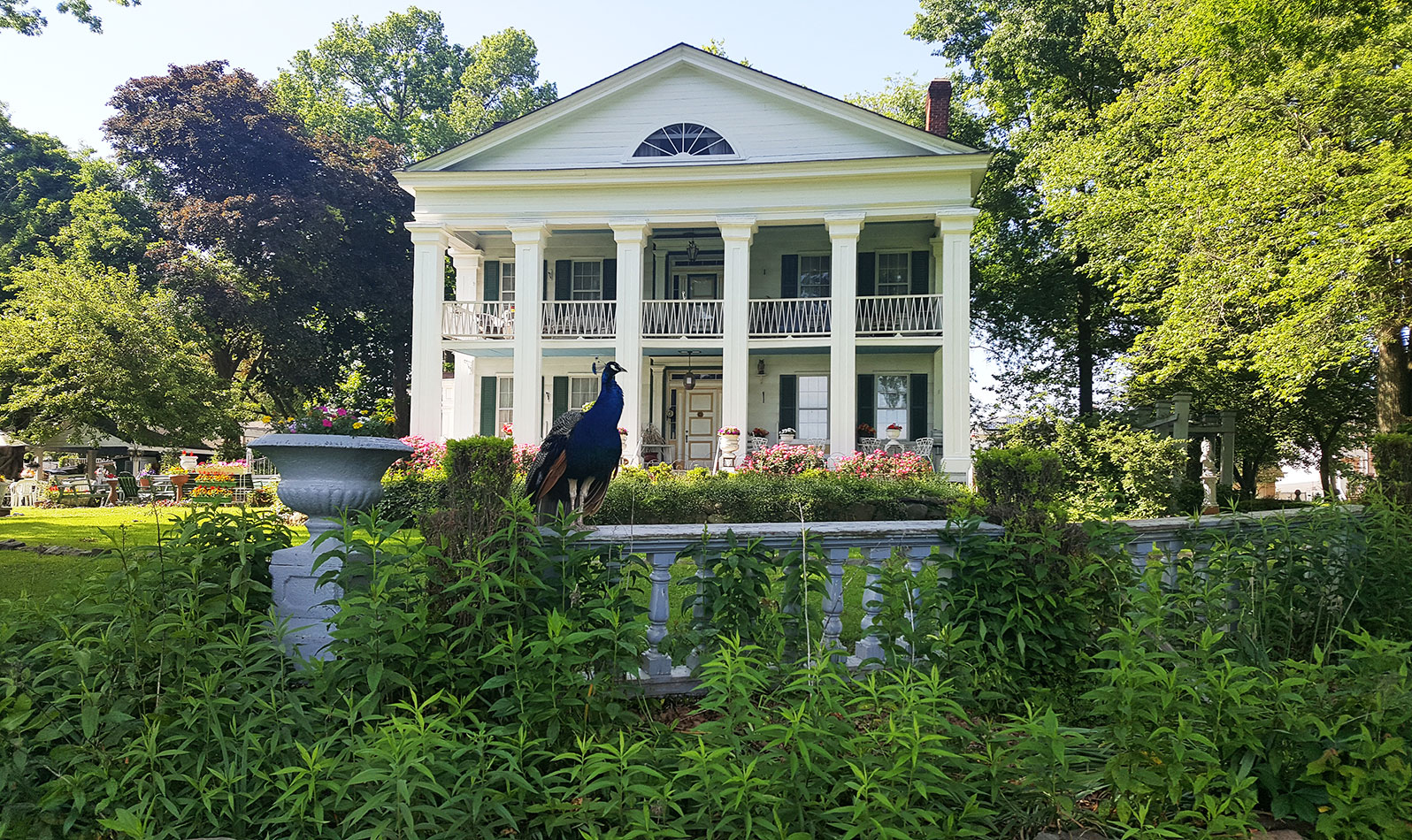 Head up Seguine Avenue to this 19th-century beauty with peacocks on the lawn. Plan ahead: make an appointment for a tour of this 18-room historic house!