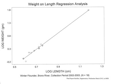 Winter flounder weight on length regression