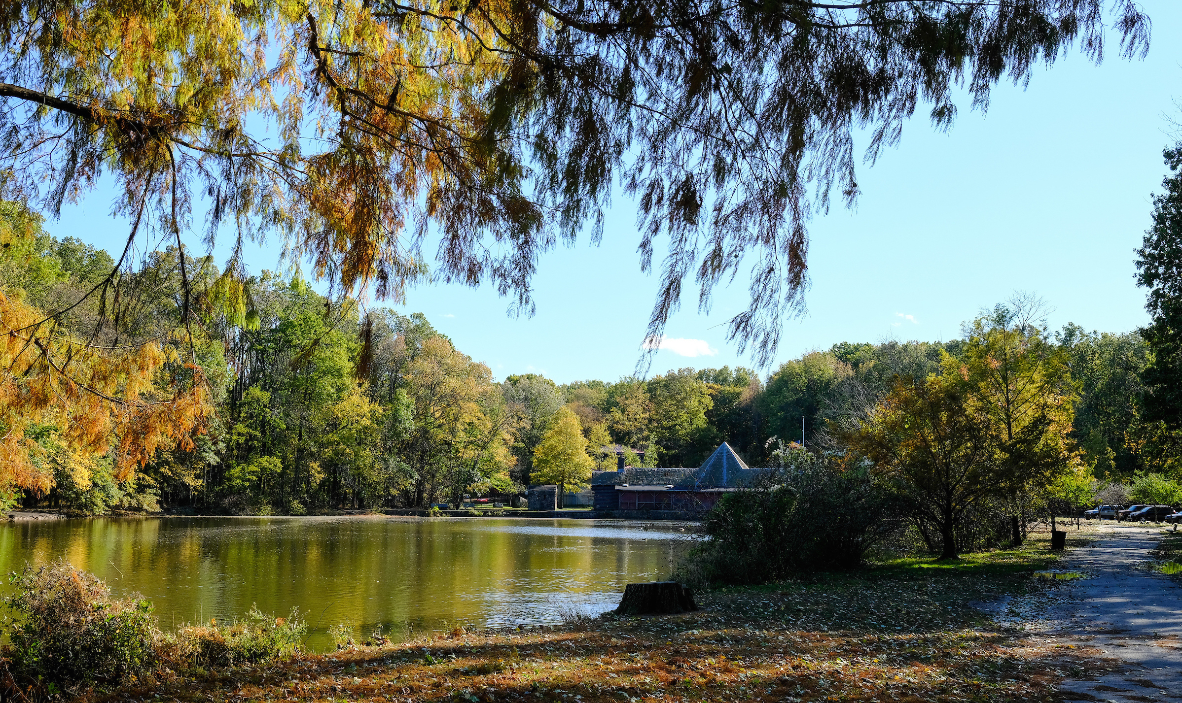 Fall Destinations at Parks Ponds and Lakes  NYC Parks