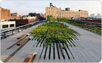 Washington Grasslands, Aerial View of the High Line over Little West 12th Street, 2009, ©Iwan Baan, photograph courtesy of Friends of the High Line