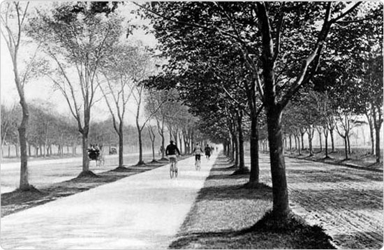 The new bicycle path along Ocean Parkway, circa 1894. Source: 34th Annual Report of the Department of Parks of the City of Brooklyn for the Year 1894.