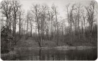 Site of one-time Bird Club Cabin on Hourglass Pond, 1945, courtesy of Staten Island Museum