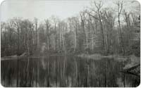 Hourglass Pond, 1946, Courtesy of Staten Island Museum
