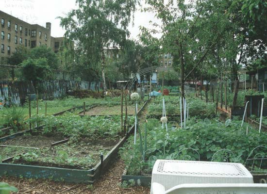 Garden of Happiness, Bronx. Photo courtesy of GreenThumb.
