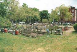 Hattie Carthan Community Garden in more recent times, after the hard work of community gardeners. Courtesy of GreenThumb.