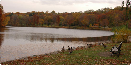 Parts of Van Cortlandt Park still feel as untouched as before they became public space in 1888.