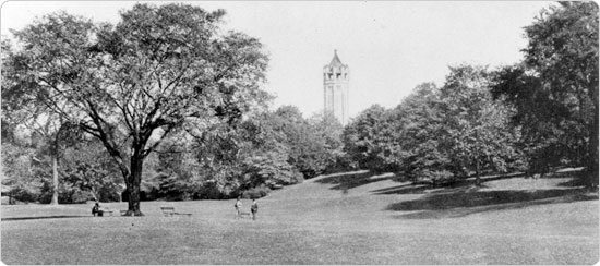 Image of The Long Meadow in Prospect Park, looking north, circa 1897. Neg. AR1242