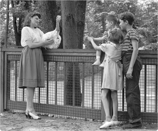 Mrs. Aaron White shows gathered children a turkey at the Bronx Park Zoo Farm, July 15, 1942. Courtesy of Parks Photo Archive, Neg. 21694.