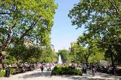 The newly reopened Washington Square Park. Photo by Malcolm Pinckney.