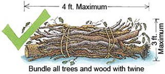 Bundle all trees and wood with twine