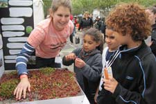 GreenTeam volunteer teaching kids about green roofs