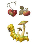 Asuka Hishiki, An Accidental Resemblance—An Apple and a Tomato (Malus domestica and Solanum lycopersicum), 2011, watercolor on paper and Atropos Fungus Caterpillar, Death's-head Hawkmoth fungus caterpillar, watercolor on paper