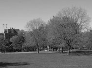 Image of The Earliest New York City Parks
