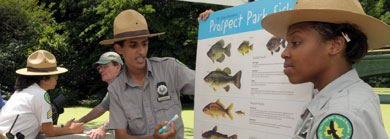 Urban Park Rangers explaining the diversity of parks ecosystem to visitors