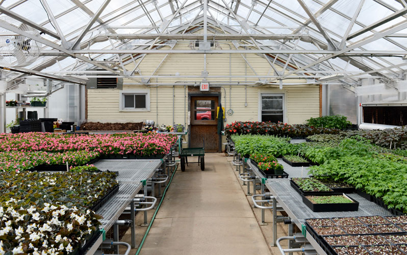 Miraculous Tour The Forest Park Greenhouse Nyc Parks Home Interior And Landscaping Oversignezvosmurscom