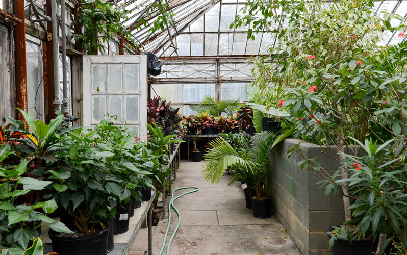 Fabulous Tour The Forest Park Greenhouse Nyc Parks Home Interior And Landscaping Oversignezvosmurscom