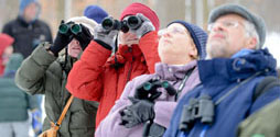 People with binoculars bird watching