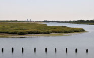 Salt Marsh Nature Trail