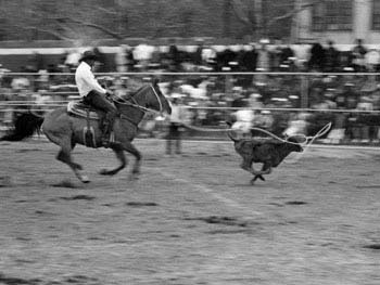 5th Annual Black World Championship Rodeo, Colonel Charles Young Playground, April 16, 1988