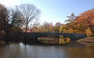 The Lullwater Bridge in Prospect Park is a popular photo shoot spot for cuddly couples.