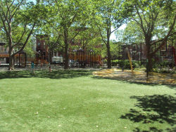 Raymond Bush Playground