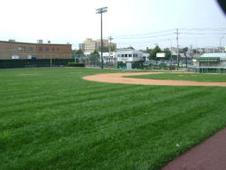 Castle Hill Little League