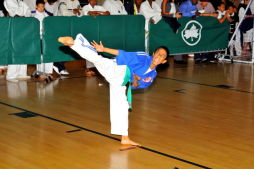 Each One Teach One: Martial Arts Tournament