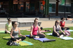 Shape Up NYC - Yoga at West Harlem Piers Park