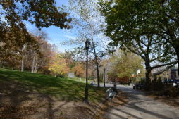 Fall 2012 in Historic Harlem Parks